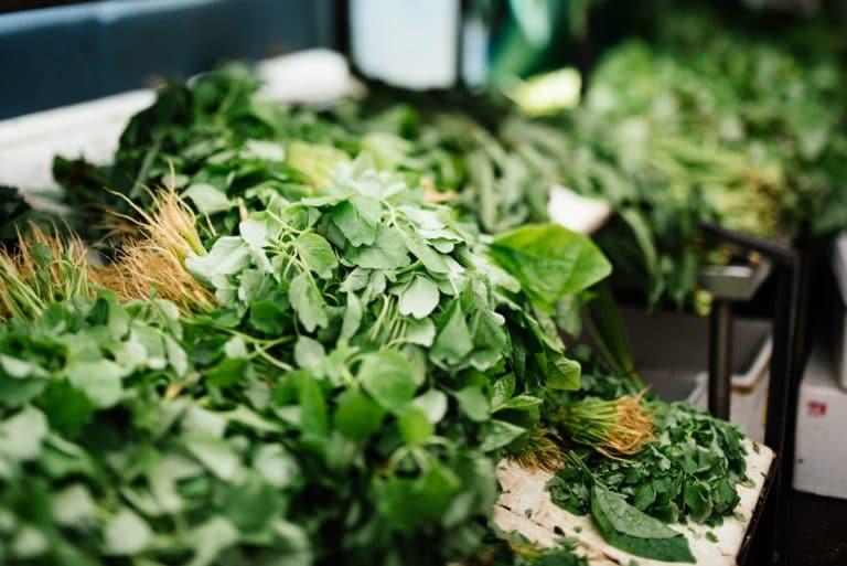 Herbes aromatiques - Corps et Santé