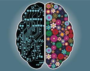 Cerveau Droit VS cerveau Gauche - Corps et Santé