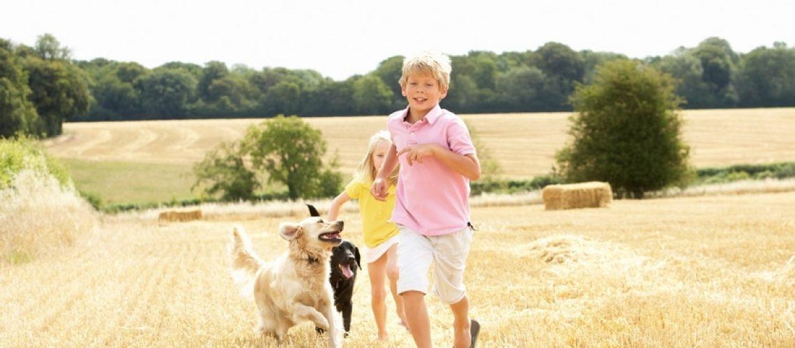 Animaux de compagnie et enfant - Corps et Santé